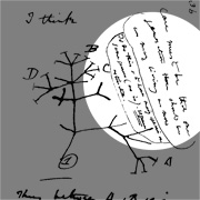 Darwin annotated his own sketch